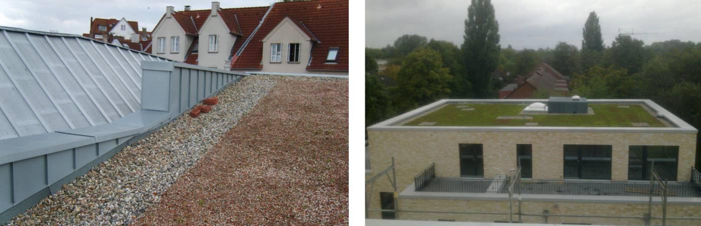 Dachbegrünung schützt | HANS.eatische DACH.technik